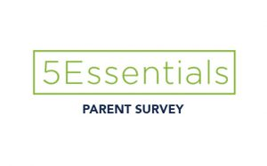 IL 5Essentials Survey